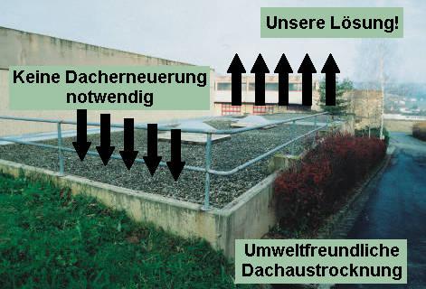 Unsere Lösung für eine umweltfreundliche Flachdachaustrocknung